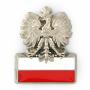Pin aigle avec le drapeau