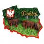Contorno de imán. Bisonte polaco