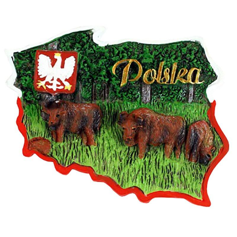 Magnes kontur Polska żubry