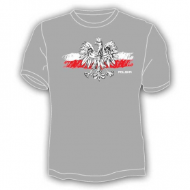 T- shirt, eagle on the flag, gray