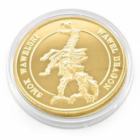Münze des Wawel-Golddrachen