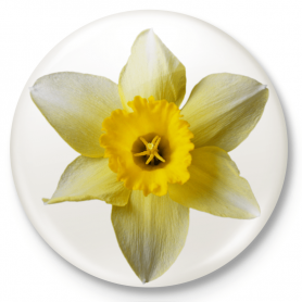 Jonquil - Uprising in the Warsaw Ghetto - button pin