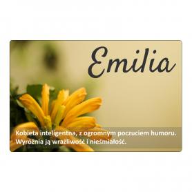Magnes na lodówkę - Emilia