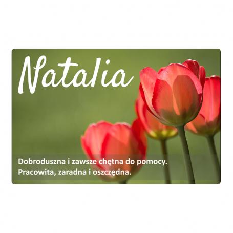 Magnes na lodówkę - Natalia