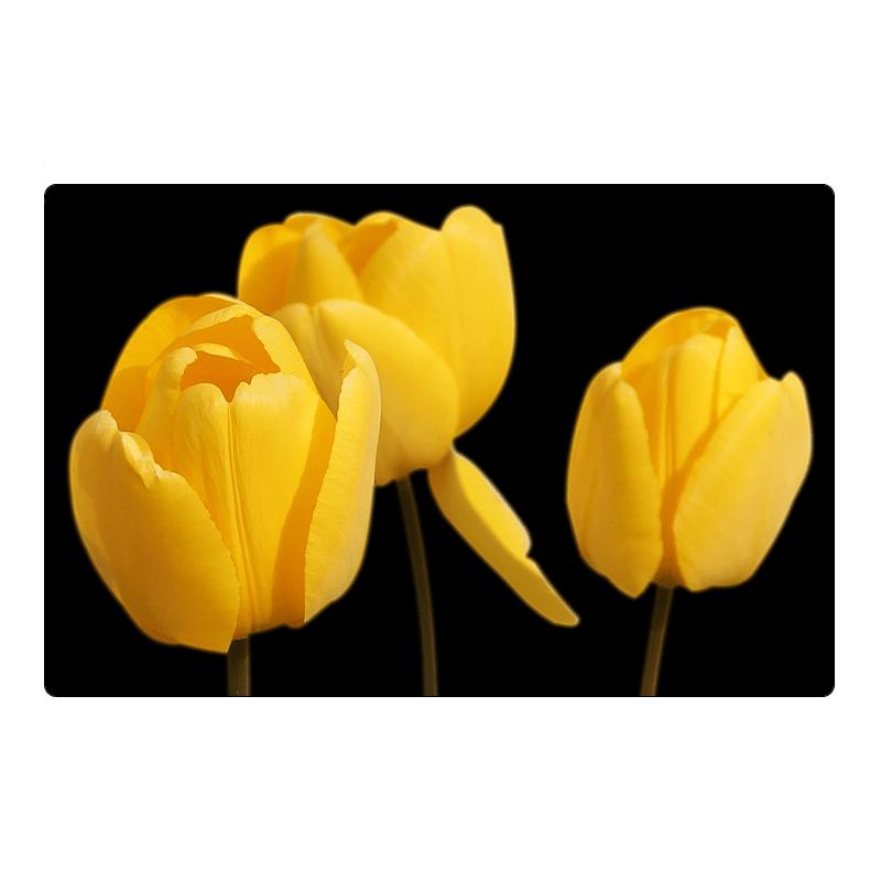 Aimant pour réfrigérateur - tulipes jaunes