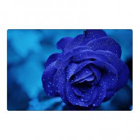 Fridge magnet - navy blue rose