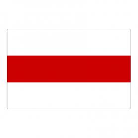 Magnes na lodówkę flaga Wolnej Białorusi